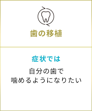 五反田駅前歯医者 歯の移植